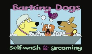 Barking Dogs Self Wash and Grooming