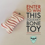 WIN THIS SQUEAKY BONE TOY