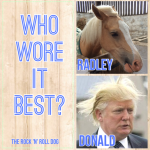 Radley vs Donald