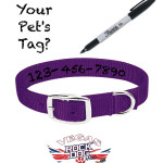 A quick fix if your pet loses it's ID tag.