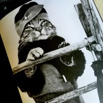 Civilized Cats book
