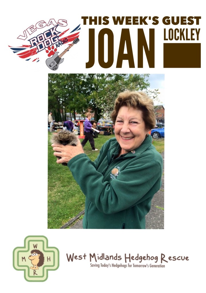Joan Lockley of the West Midlands Hedgehog Rescue Guest on Vegas Rock Dog Radio