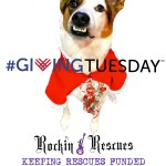 #givingtuesday Rockin 4 Rescues