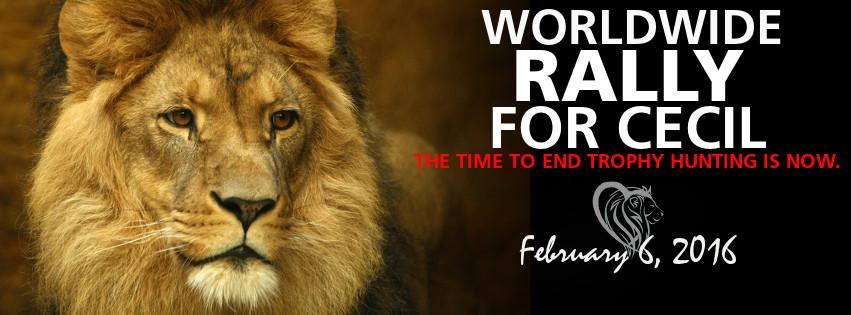 Worldwide Rally Cecil