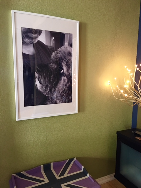 Mr Twix print using the IKEA frame and mat