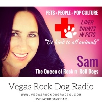 liver shunts in pets Vegas Rock Dog Radio