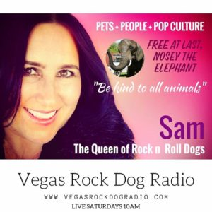 Vegas Rock Dog Radio Nosey Elephant