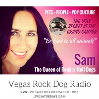 Abuse of pack animals at the Grand Canyon Vegas Rock Dog Radio