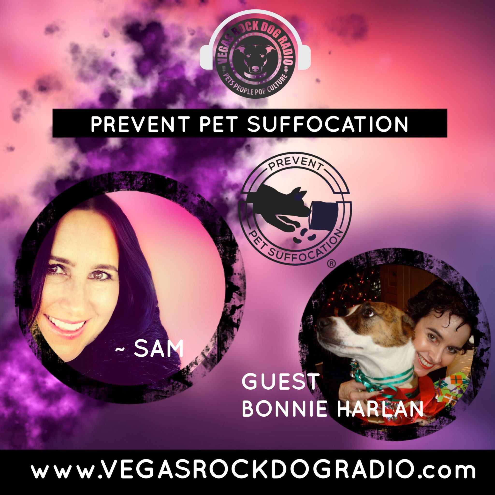 How to prevent pet suffocation Vegas rock dog radio